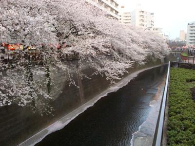 201046_053